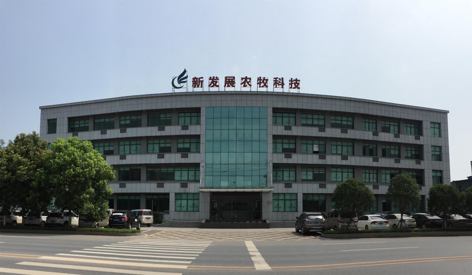 公司低像素办公大楼.jpg